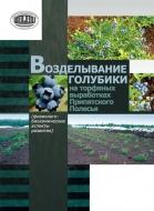 Возделывание голубики на торфяных выработках Припятского Полесья: (физиолого-биохимические аспекты развития)